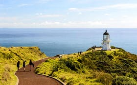 Cape Reinga Day Tour