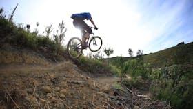 Waitangi Mountain Bike Park