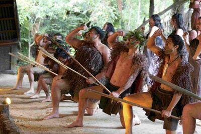 An Unmissable Māori Cultural Experience and Hāngi (Included)